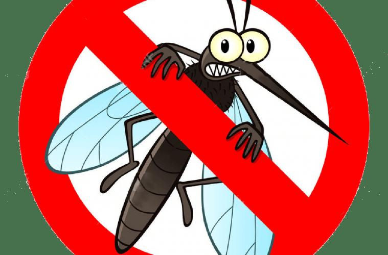illlustration solutions anti-moustiques les plus efficaces en 2021